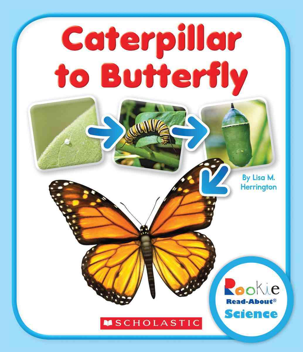 Caterpillar to Butterfly By Herrington, Lisa M.